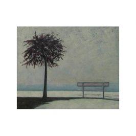 Obraz - Lavička se stromem