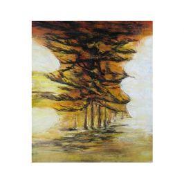 Obraz - Abstraktní bouře
