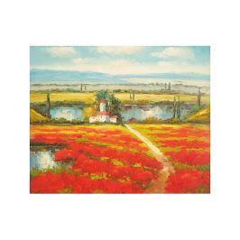 Obraz - Pole s červenými květy