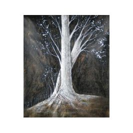 Obrazy - Starý strom