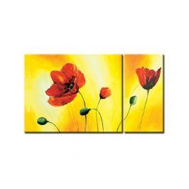 Obrazový set - Květy Máků