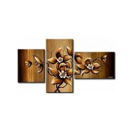 Vícedílné obrazy - Květy keře