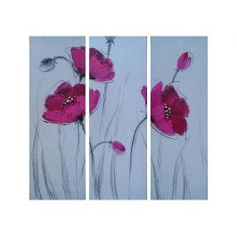 Obrazový set - Růžové vlčí máky