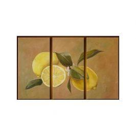 Vícedílné obrazy - Citrony