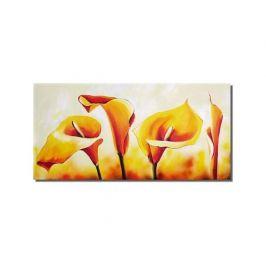 Obraz - Žluté kaly